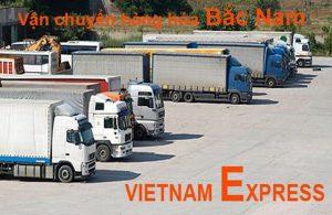công ty vận tải Việt Nam Express