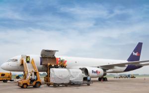 Fedex - đơn vị vận chuyển hàng hóa quốc tế uy tín